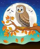 Owl topic image 6 Royalty Free Stock Photography