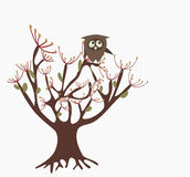 Owl on a tree Stock Photography