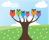 Owl on tree. Cute color owl on tree vector illustration