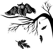 Owl on a tree branch. Silhouette owl on a tree branch on the isolated background stock illustration