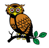 Owl on a tree branch Royalty Free Stock Photo