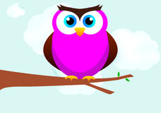 Owl On A Tree Branch Stock Image
