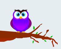 Owl On A Tree Branch Royalty Free Stock Images