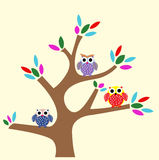 Owl at Tree Cartoon. Cute owl cartoon for website, t-shirt kids, drawing books. wallpaper bedroom Stock Photography