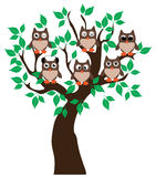 Owl in the tree. Funny owls sitting in the tree vector illustration