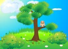 Owl tree green meadow Royalty Free Stock Photos