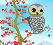 Owl on tree of love. Stock Image