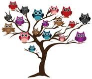 Owl Tree Royalty Free Stock Photos