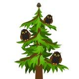Owl tree on a white background Stock Photo