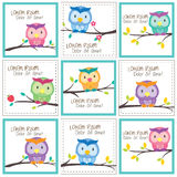 Owl on trees layout design Stock Photography