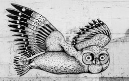 The Owl of Tromsø. An owl on the wall in Tromsø in the north of Norway Stock Photography