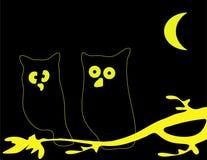 owl två Arkivfoto