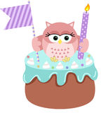 Owl up birthday cake Royalty Free Stock Images