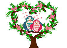 Owl valentine Royalty Free Stock Photos