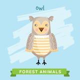 Owl Vector, animali della foresta Fotografia Stock Libera da Diritti
