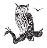 Owl  - vector graphic decorative tattoo design Royalty Free Stock Photography