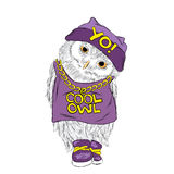 Owl vector . Hip-hop. Rap. Owl in a cap and sneakers . Cool owl . Royalty Free Stock Photo
