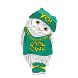 Owl vector . Hip-hop. Rap. Owl in a cap and sneakers . Cool owl . Stock Images