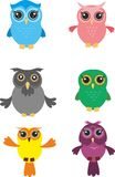 Owl vector. The owl  is vector illustration Royalty Free Stock Photo