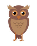 Owl Vector Illustration in Flat Design Royalty Free Stock Image