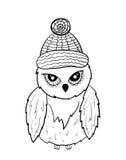 Owl vector Stock Photo
