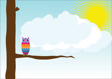 Owl Vector. An owl standing on a tree branch during the sunny day Stock Images