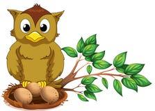 An owl watching her nest Stock Photos
