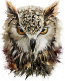 Owl watercolor painting stock illustration