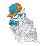 Owl wearing a cap and a tie. Owl glasses. Cute owl. Print. Hipster. Painted Bird. Postcard with owl. Royalty Free Stock Images