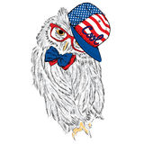 Owl wearing a cap and a tie. Print. Hipster. Painted Bird. America. USA. Stock Photography