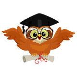 Owl wearing graduation cap and holding diploma while flying royalty free illustration