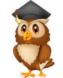 Owl wearing graduation cap royalty free illustration