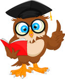 Owl wearing graduation cap and reading book Royalty Free Stock Photos