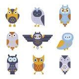 Owl wild bird cartoon vector. Royalty Free Stock Image