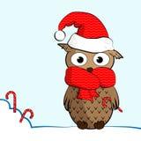 Owl_winter Royaltyfri Bild