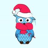 Owl_winter_frozen 图库摄影