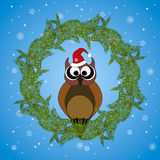 Owl in winter with santa hat. A wreath of fir branches. Stock Photos