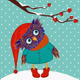 Owl winter vector Stock Image