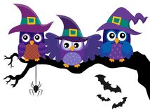 Owl witches theme image 2 Royalty Free Stock Photography