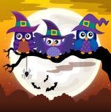 Owl witches theme image 3 Royalty Free Stock Image