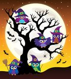 Owl witches theme image 4 Stock Photo