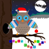 Owl With Merry Cristmass Stock Photo