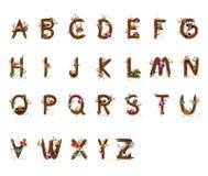 Owl Wood Vector-brieven a aan z-doopvonten Stock Foto's