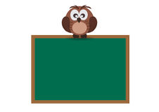 Owl and Wooden Board Royalty Free Stock Photo