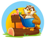 An owl and a worm reading a book. Illustration of an owl and a worm reading a book on a white background Stock Photo