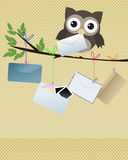 Owl you got mail. Little brown owl on branch with various kind of envelopes hanging of the branch Stock Photography