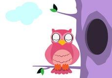Owlen med kyler färgar Arkivfoton