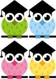 Owlen är ett symbol av vishet Arkivfoto