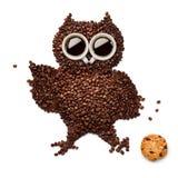 Owlet με το μπισκότο Στοκ φωτογραφία με δικαίωμα ελεύθερης χρήσης