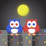 Owlet δύο εραστές Στοκ φωτογραφία με δικαίωμα ελεύθερης χρήσης